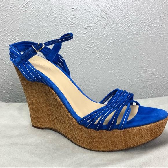 bb116a12c396 J. Crew Shoes - J Crew Bette Suede Platform Wedge Blue Size 9